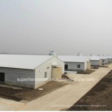Prefabricated Poultry House with Full Set Breeding Equipment