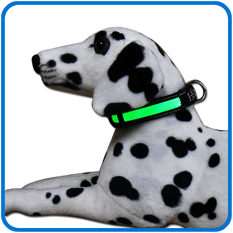 Led Light Up Güvenlik Köpek Yaka
