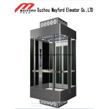 Maschinenraum-Panorama-Aufzug mit gemaltem Blatt