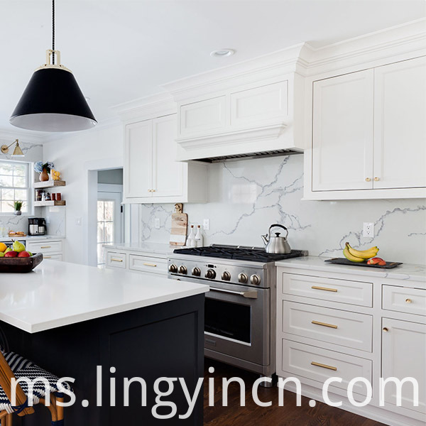 Painted Shaker Modular Kitchen Cabinets Designs 2