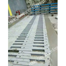Hot Sale High Quality Finger Expansion Joint