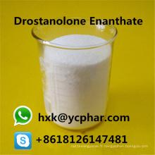 Le stéroïde blanc de bodybuilding saupoudre Drostanolone Enanthate CAS 472-61-145