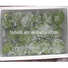 Brócolis frescos chineses