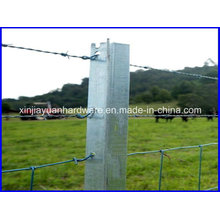 2.04kg/M Heavy Duty Hot DIP Galvanized Star Picket for Fencing