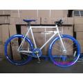 Neues Modell Single Speed 700c Fixie Fahrräder (FP-FGB1303)