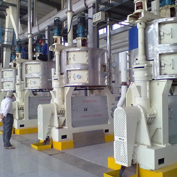 Senf Oil Plant Machinery