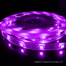 High Lumen imperméable à l'eau IP68 5050 rgb led strip, 5 mètre rgb led strip