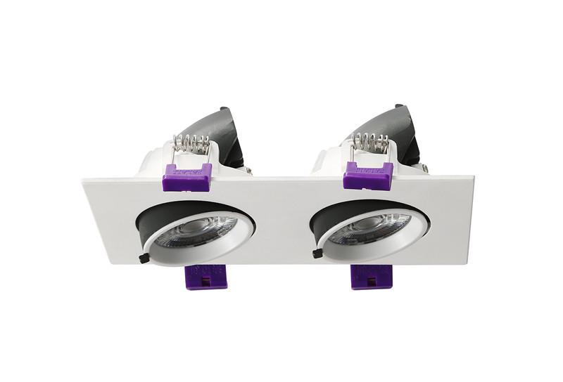 two head LED trunk downlight
