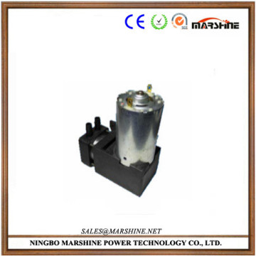 mini high flow piston pump