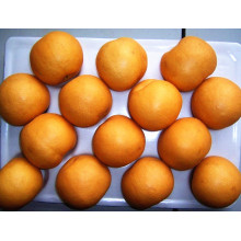 Proveedor de Dulces de Oro Fresco / Fengshui