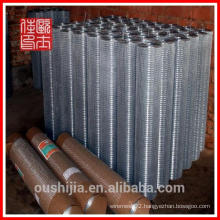 Anping Electro Galvanized Iron Wire Netting Mesh(factory)