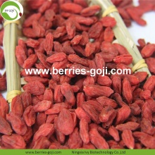 Nutrition en gros d'usine Natural Baies de Ningxia Goji