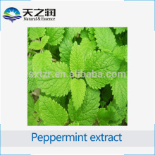 China Supplier Food and Beverage Additive Peppermint Leaf Extract powder 10:1 , Peppermint leaves Extract Powder