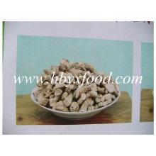 Perna / haste de cogumelos desidratados