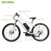 CE EN 15194 importação bafang mid drive de motor e bicicleta de montanha bicicleta elétrica 48 v 750 w da China