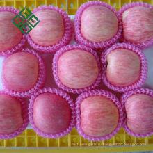 горячая продажа китайский Фуджи яблоко, свежее яблоко