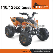 125cc 2 x 4 off Road ATV Quads con CE