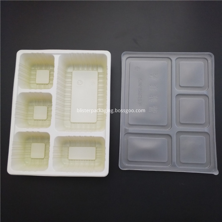 Food Tray with Cover