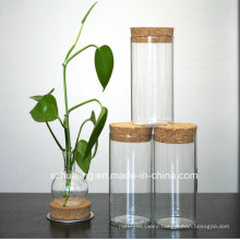 High Qualiy Clear Test Tube Glass Jar with Cork