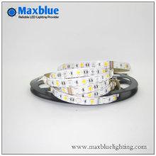 DC24V 12 milímetros 96LEDs / M 5050 RGBW flexível tira luz LED