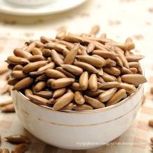 ISO Certified Organic Dried Fruit Pine Nuts  Pine Kernel