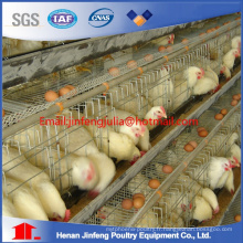 Une cage de poulet de type couche pour Hotsale