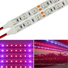 LED Plant Growing Lights -16.4 Feet Full Spectrum SMD 5050 Red Blue 4:1 strip Light for Greenhouse Hydroponic Plant