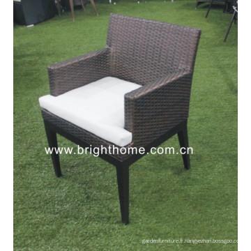 Chaise de mèche haute qualité / chaise de jardin / chaise d'hôtel