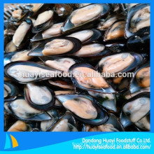 Frozen Boiled Mussel With Shell