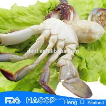Iqf blau Schwimmen Krabbe FDA Zertifizierung