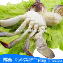 HL003 Hot sale frozen swimm crab