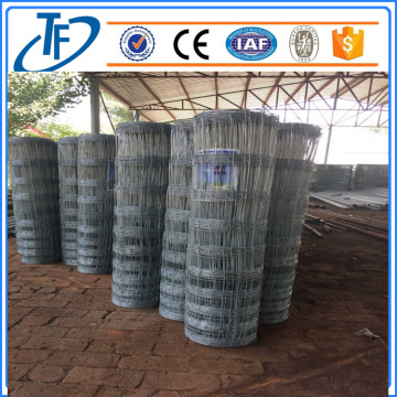 200g / m2 Hot Dipped Galvanized Farm Fence, Pagar Lembu