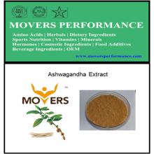 Natürlicher Extrakt: Ashwagandha Ayurveda-Extrakt