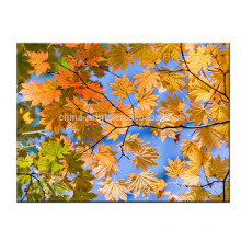 Impresión del arte de la lona de la imagen de las ramitas del árbol con la pintura estirada para la decoración casera