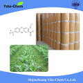 Oxyfluorfen 95% TC selective contact herbal medicine