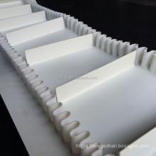 SIDEWALL PVC CONVEYOR BELT FOR FRUIT