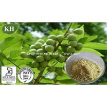 Extracto natural del Palmetto de la sierra orgánica ácidos grasos 25% -80% por HPLC; Aceite de Palmetto de Sierra por Scf-CO2