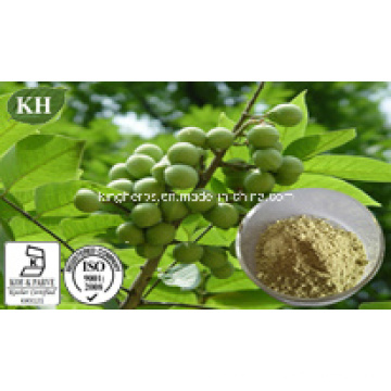 Природная органическая пила Palmetto Extract Fatty Acids 25% -80% по данным ВЭЖХ; Пила Palmetto Oil по Scf-CO2