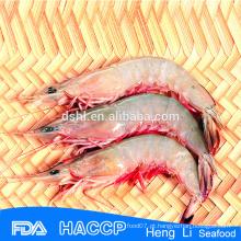 HL002 captura selvagem congelado congelado camarão vermelho pud