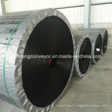 Courroie en acier au caoutchouc pour la manutention en vrac du solide