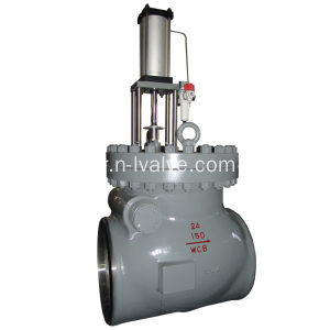 Extraction non retour Valve