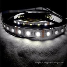 Certificat CE & ROHS non étanche 5050 RGB Bandeau flexible avec 2 ans de garantie
