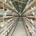 High quality galvanized layer chicken cage with drinking system
