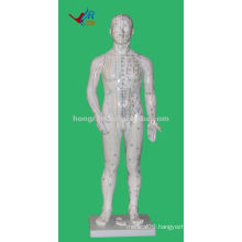 Chinese Anatomy Professional Medical AcupunctureModel, 70cm