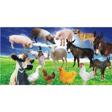 Promote Animal Growth Feed Grade Vitamin B12