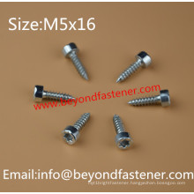 Torx Driver Screw Self Tapping Screw