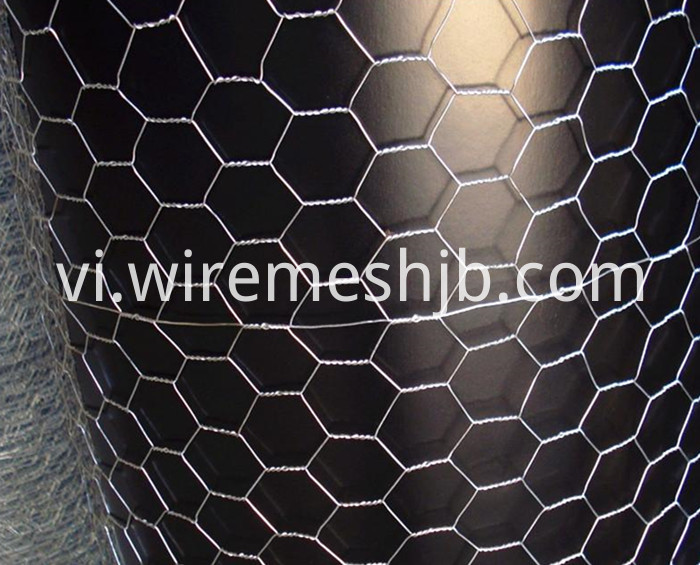 Hexagonal Mesh Fence