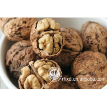 best walnuts in shell price for Turkey