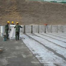 Membrane imperméabilisante de polymère de polypropylène de polypropylène / matériaux de couverture de toiture de construction