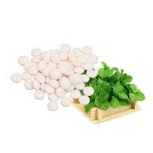 Neue Produkte Bio-Süßstoff Minzextrakte Stevia